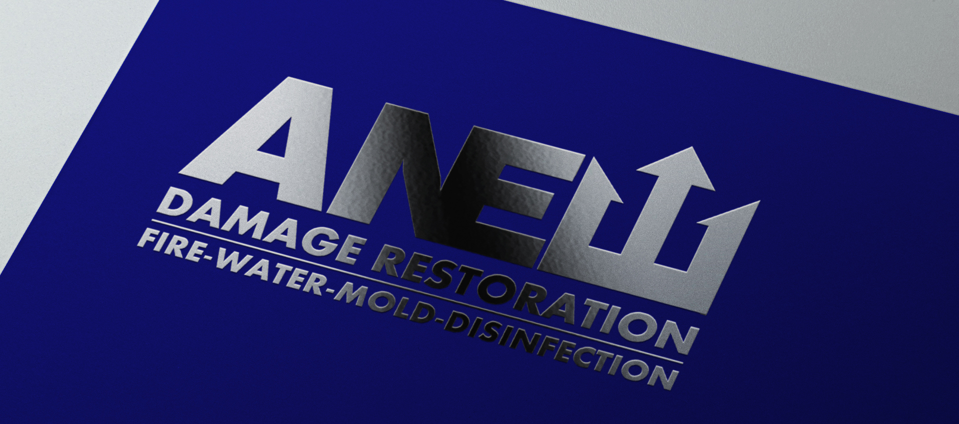 Anew Damage Restoration Logo